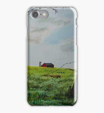 Broken Fence iPhone Case/Skin