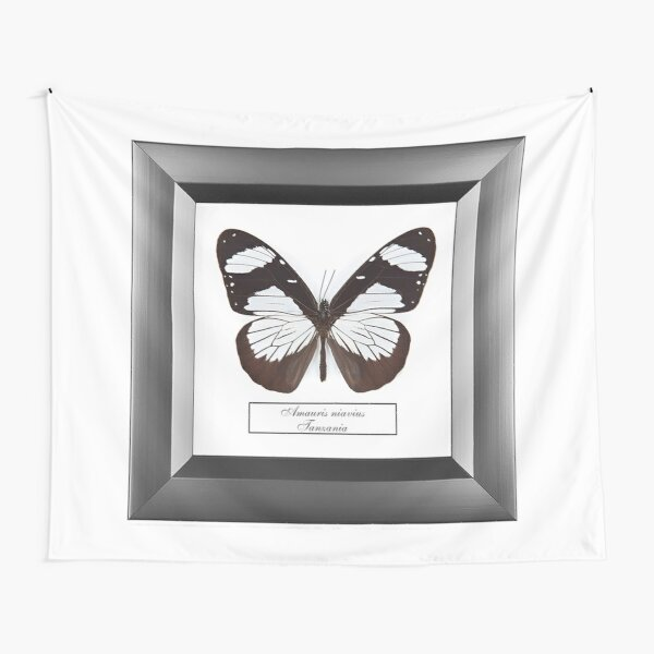 #Amauris #Niavius, #nature, #insect, animal, summer, picture frame, freedom, illustration, design Tapestry