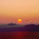 Love  Cyprus by Neophytos