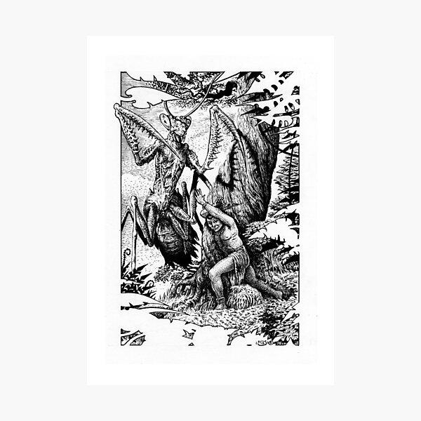 Giant Mantis Photographic Print