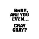 Bruh, Are You Even Cray Cray? by BigAl3D