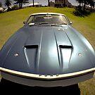 Falcon XB Hardtop Coupe 1 by Pete McConvill