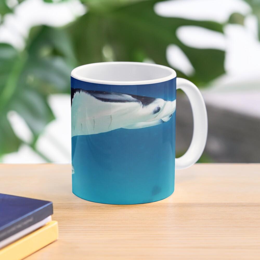 Manta companion Mug