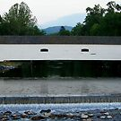 Elizabethton Covered Bridge  by lynell