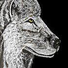 Winter Wolf by Dawn B Davies-McIninch