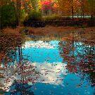Mme. Sherri's Pond by Merritt Brown III