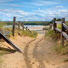Beach Path by Dave Hare