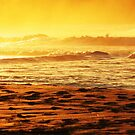 Good Morning Australia - Morning Light by Mick Duck