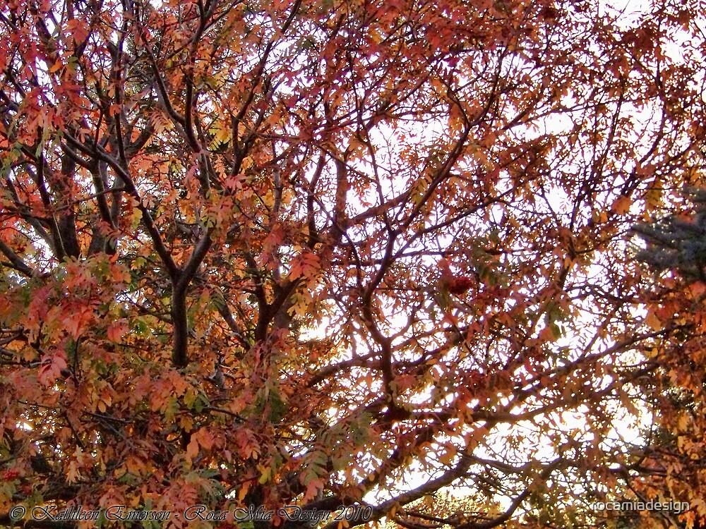 Autumn Parade by rocamiadesign