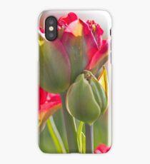 Tulip trio iPhone Case/Skin