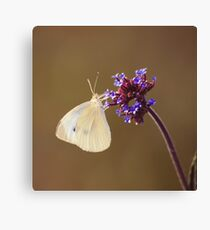 Flower with Butterfly Canvas Print