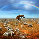 Desert Rainbow by Ben Goode