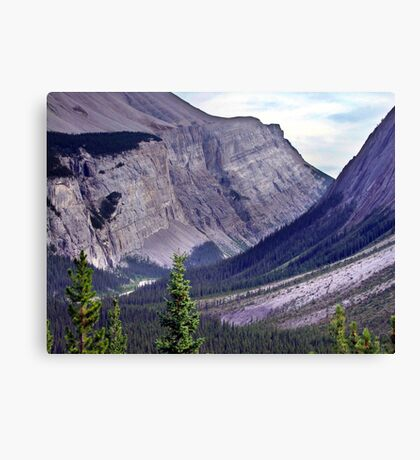 Bow River Valley Canvas Print