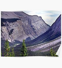 Bow River Valley Poster