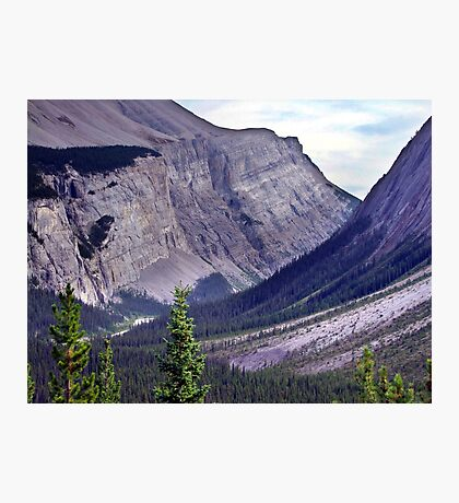 Bow River Valley Photographic Print