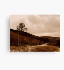 Desolate Field in Spring Canvas Print