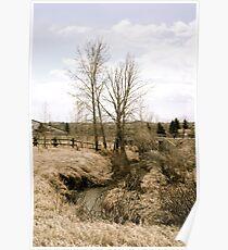 Rural Stream Poster