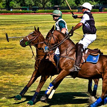 Polo Adrenaline! by DeerPhotoArts
