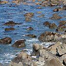 Watch out for rocks! - Kaikoura coastline by Belinda Osgood