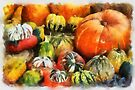 A variety of Pumpkins in watercolour by David Carton