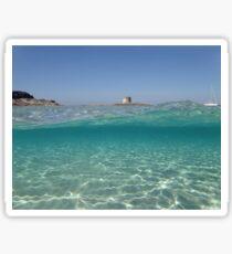 Sardinia underwater - Stintino, la pelosa Sticker