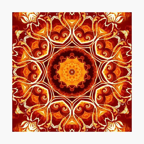 Orange Lotus Photographic Print