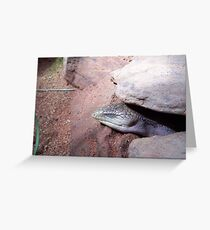 I am not here you can't see me! Greeting Card