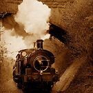 Steam train going under bridge, Shepton Mallet, Somerset, UK by David Carton