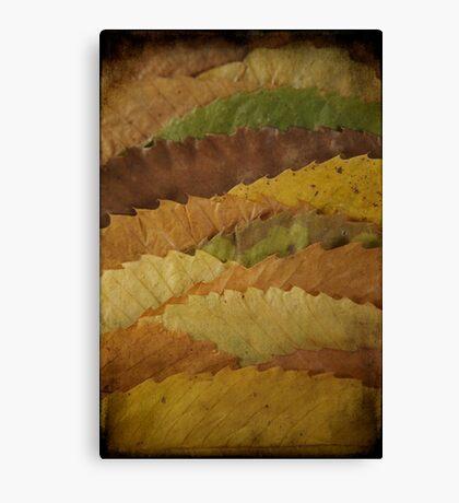 Leaf Landscape Canvas Print