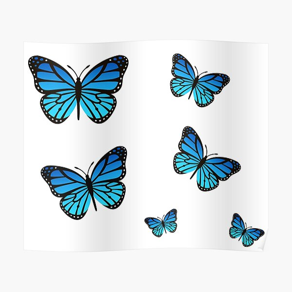 Blue Butterfly Pack Poster