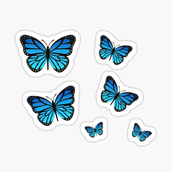 Pack Papillon Bleu Sticker