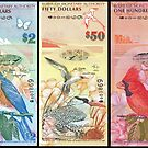 Birds Of Bermuda On Banknotes by Robert Abraham