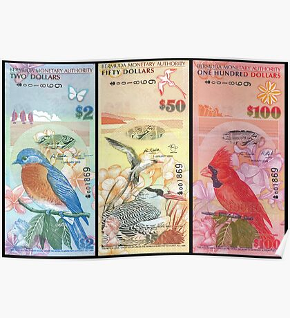 Birds Of Bermuda On Banknotes Poster