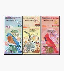 Birds Of Bermuda On Banknotes Photographic Print