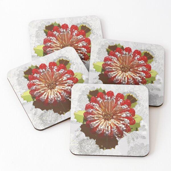 Digital Art Red Banksia Tozers Block Western Australia Coasters (Set of 4)