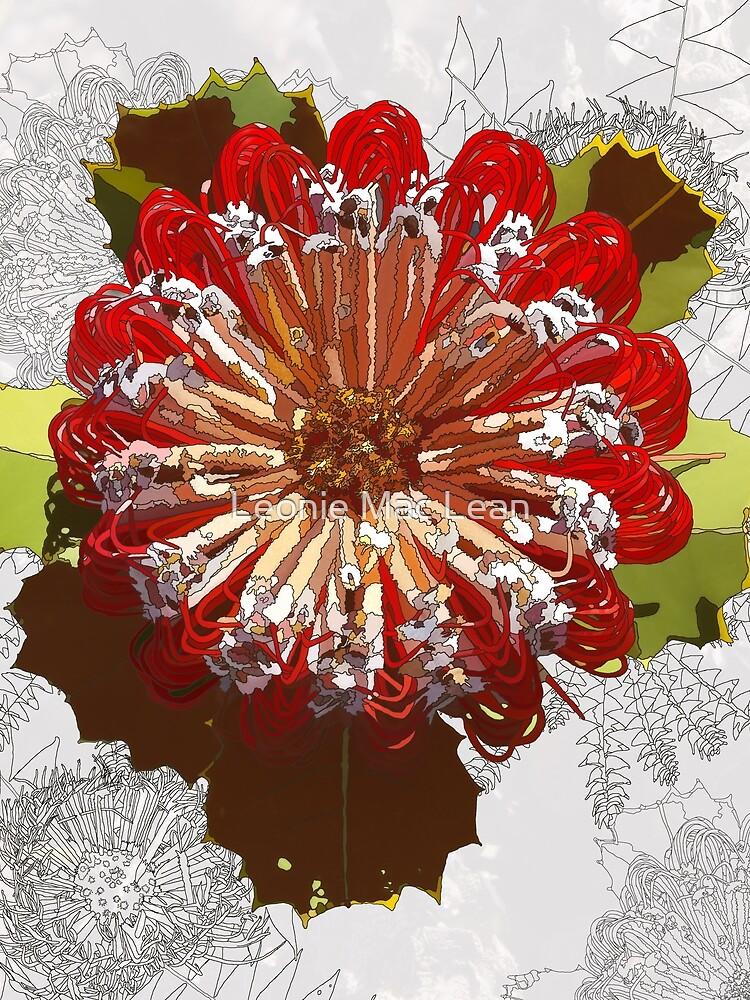 banksia menzies, Digital Art Red Banksia Tozers Block Western Australia by yallmia