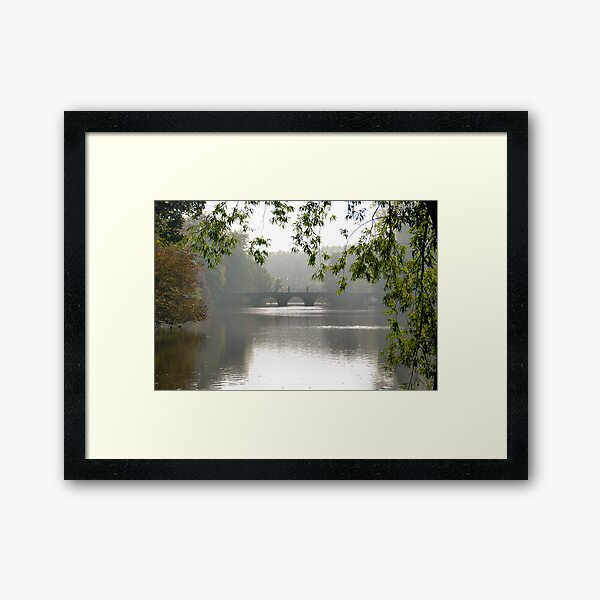 Pedestrians on the bridge Framed Art Print