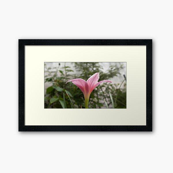 Pinky Pinky Framed Art Print