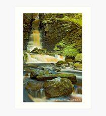 Mill Gill Force, Askrigg Art Print