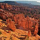 Sunrise in Bryce by Bruce Alexander