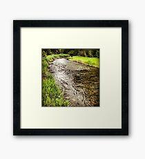 Riverside Greenery Framed Print