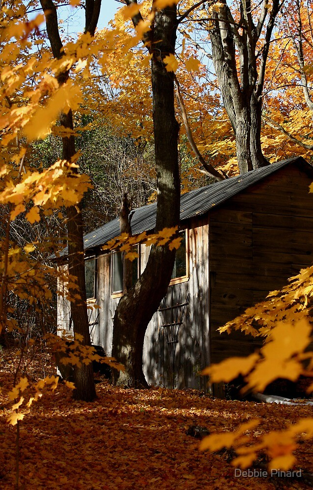 Cabin in the Autumn Woods by Debbie Pinard