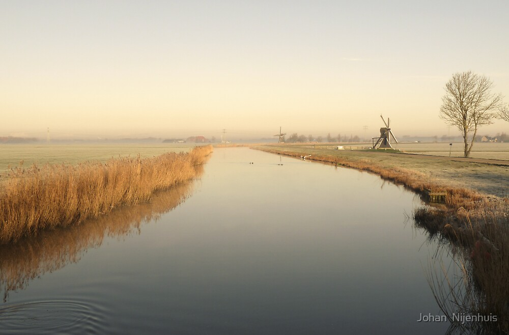FIRST LIGHT AT SPRING MORNING by Johan  Nijenhuis