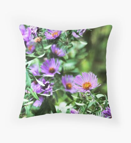 Purple Fall Flowers Throw Pillow