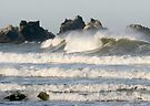 Big Wave by Dave Davis