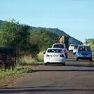 Traffic Jam, Pilanesberg style by Karen01