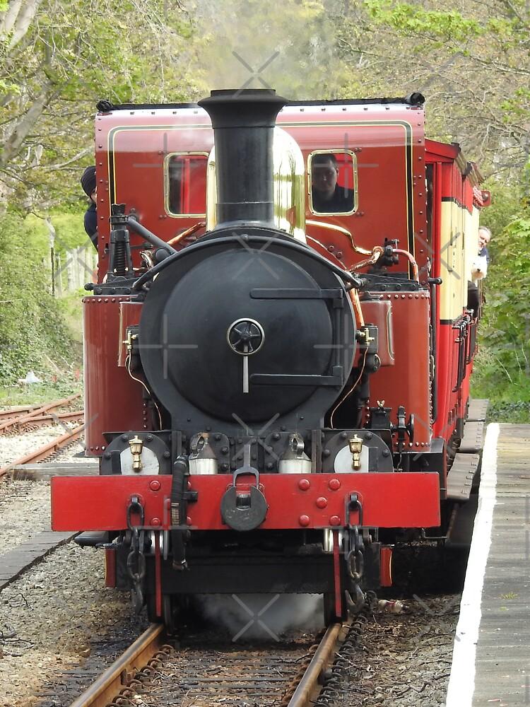 Isle of Man Steam Engine Ballasalla Station by tribbledesign