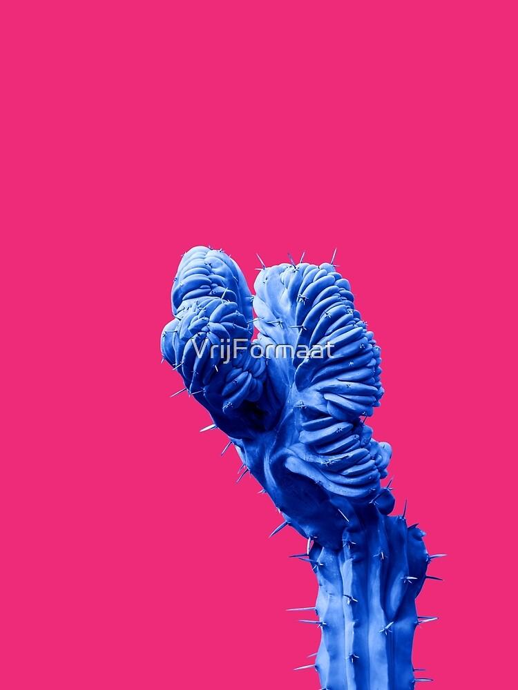 Funky Cactus by VrijFormaat