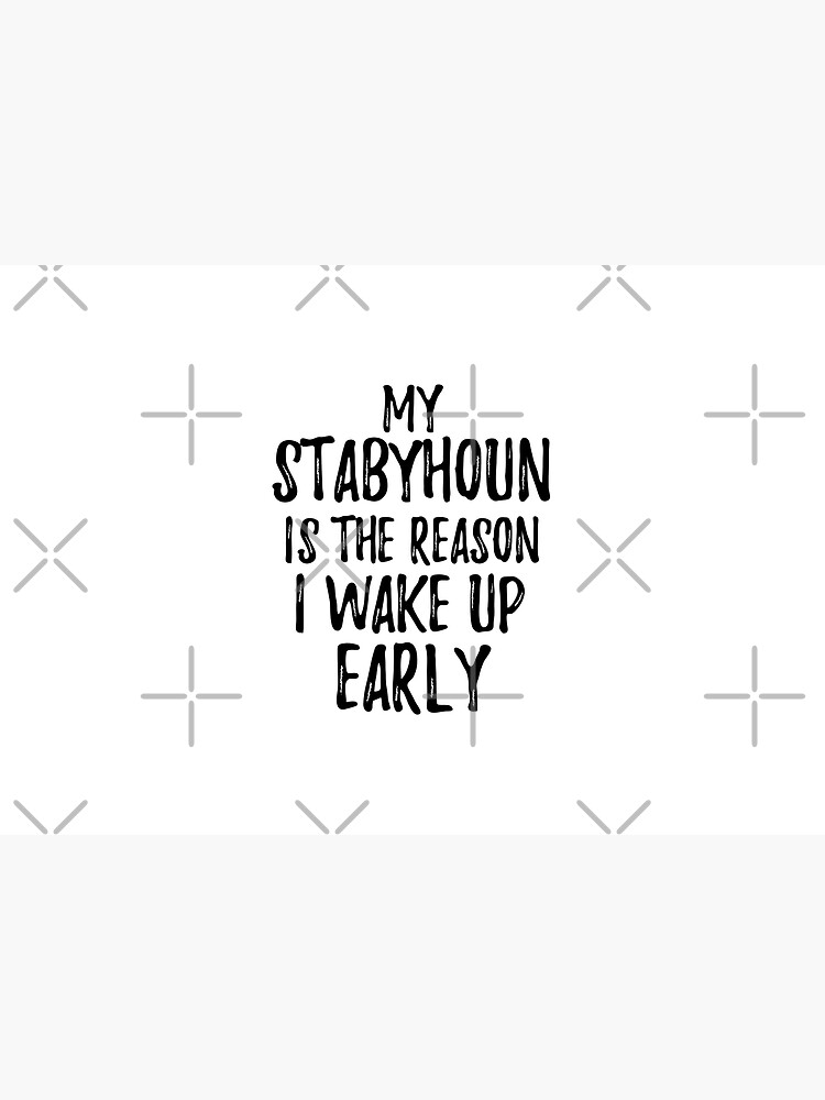 My Stabyhoun Is The Reason I Wake Up Early by FunnyGiftIdeas