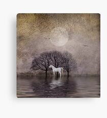 A White Horse in the Pond Metal Print